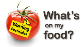 What's on my food logo
